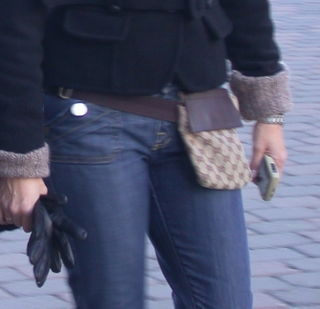DSCN9063-crop purse