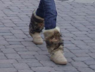 DSCN9144-boots